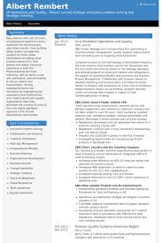 Vice President Operations And Quality Resume Samples