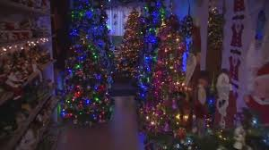 Fraser Christmas Trees Uk by Couple Fill House With Over 100 Christmas Trees