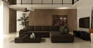 Brown Sofa Decorating Living Room Ideas by Brown Themed Living Room Ideas Centerfieldbar Com