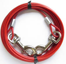 Amazon.com : Dog Tie Out Run Cable Long Leash Yard Stake Pet ... Do Female Dogs Get Periods How Often And Long Does The Period Dsc3763jpg The Best Retractable Dog Leash In 2017 Top 5 Leashes Compared Please Fence Me In Westward Ho To Seattle Traing Talk Teaching Your Come When Called Steemit For Outside December Pet Collars Chains At Ace Hdware Biglarge Reviews Buyers Guide Amazoncom 10 Foot With Padded Handle For Itt A Long Term Version Of I Found A Rabbit Wat Do
