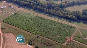 Pumpkin Patch Cal Poly Pomona by Shuckles Corn Maze And Pumpkin Patch Offers Family Fun Youtube