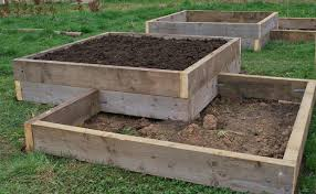 New raised beds – the story so far