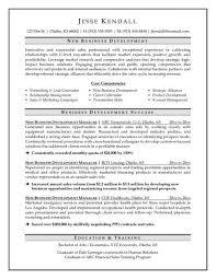 JK New Business Development Manager Resume Sample
