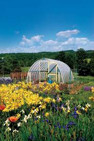 15 DIY Backyard Greenhouses - How To Make A Greenhouse Backyard Greenhouse Ideas Greenhouse Ideas Decoration Home The Traditional Incporated With Pergola Hammock Plans How To Build A Diy Hobby Detailed Large Backyard Looks Great With White Glass Idea For Best 25 On Pinterest Small Garden 23 Wonderful Best Kits Garden Shed Inhabitat Green Design Innovation Architecture Unbelievable 50 Grow Weed Easy Backyards Appealing Greenhouses Amys 94 1500 Leanto Series 515 Width Sunglo