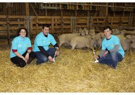 chambre agriculture bourgogne charolles ovinpiades les meilleurs jeunes bergers de bourgogne à