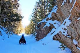 Christmas Tree Permits Colorado Springs by Snowmobiling Vacation At Mt Princeton Springs Resort