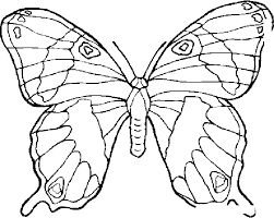 Animals Coloring Pages 7