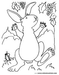 Luxury Peter Rabbit Coloring Pages For Your Book Luxury Mini Rex