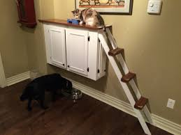 Cat ledge that I built to keep the dogs from eating their food and