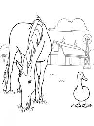 Coloring Pages Spirit The Wild Horse Picture