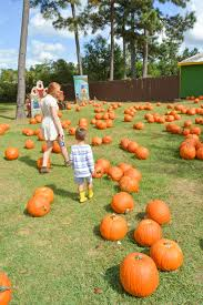 Pumpkin Patch Bastrop County by 10 Family Friendly Farms To Visit In Texas U2014 The Titan Adventures
