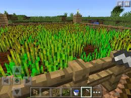 Minecraft Pumpkin Seeds Wont Plant by How Does Farming Work In Minecraft Pocket Edition U2013 Phoneresolve