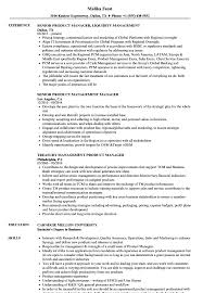 Download Product Management Manager Resume Sample As Image File