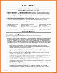 Resume Samples For Experienced Professionals Doc Marketing Templates Free Downloads Best