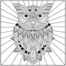 Adult Coloring Pages Owl