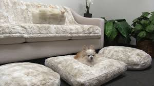 Bowser Dog Beds by Peluche Plush Cuddle Cloud Cuddle Cream Dog Beds Youtube