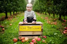 Apple Orchard Pumpkin Patch Sioux Falls Sd by Red Delicious Orchards Apple Orchard And Photography