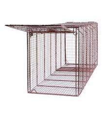 live cat trap humane live animal traps for domestic animals small