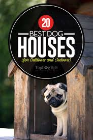 Top 20 Best Dog Houses For Outdoors And Indoors In 2017 Cloud Nine Dog Traing Best Houses In 2017 For Both Indoor And Outdoor Use Siberian Husky Costs Facts Infographic Ultimate Guide Farmer Tag Wallpapers Country Children Tractor Fields Farm Dogs Plastic Dog Barnhome Kennel Petshop Online 25 Food Bowls Ideas On Pinterest Project Food Cindee X Stackhouse Owyheestar Weimaraners News 614 Best Australian Cattle Images Blue Heelers 5 Facts About Dogs Deworming The Horse Owners Resource Lonely Escapes Yard To Get A Hug From His Friend Youtube Oakwood Park Morton6711