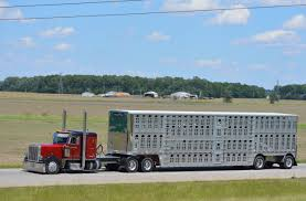 Pictures From U.S. 30 (Updated 3-2-2018) Truck Trailer Transport Express Freight Logistic Diesel Mack 32 Best Klos Custom Trucks Images On Pinterest Trucks Big Williams Brothers Trucking Competitors Revenue And Employees Williamstrans Twitter Bah Atlanta Ga Best Truck 2018 Ccj Career Leadership Award Kevin Tomlinson Was Born To Be In Trucking Pictures From Us 30 Updated 322018 Lpg Gas Ivecouk All Loaded