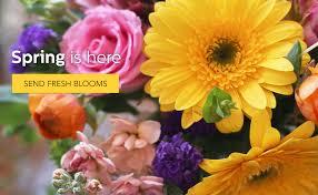 Thomson Florist