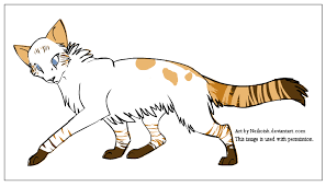 warrior cat names new warrior cat name ideas needed by puddlekit on deviantart