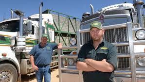 100 Livestock Trucking Companies Transport Company Follows Successful Motto The Land