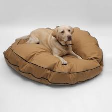 44 best leather dog accessories images on pinterest dog