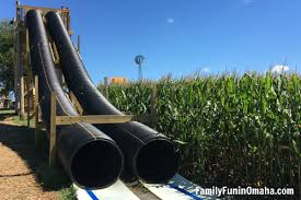 Omaha Pumpkin Patch by 5 Things We Love About Skinny Bones Pumpkin Patch Family Fun In