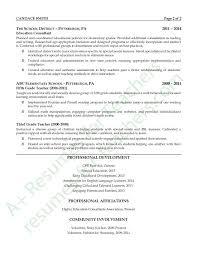 Education Consultant Resume Example