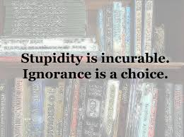 Sure Its Possible To Be Intelligent And Make A Bad Choice Weve All Done It Remains Stupid The Concept Of Decision Requires Your