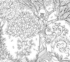 Inspirational Coloring Pages From Secret Garden Enchanted Forest And