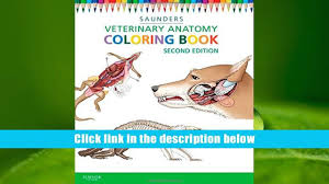 Read Online Veterinary Anatomy Coloring Book 2e For Ipad