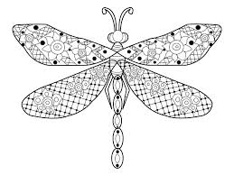 Dragonfly Coloring Pages Download Vector For Adults Stock Image Cute Cu