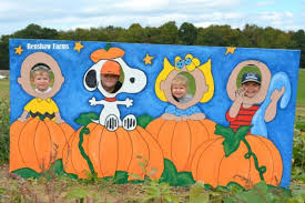 Pittsburgh Area Pumpkin Patches by A Mom U0027s Guide To Fall Festivals Pumpkin Patches U0026 More