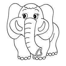 Elephant To Color In