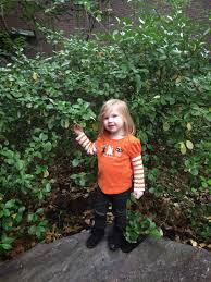 Bronx Zoo Halloween 2014 by Witty Whit U0027s Words Boo At The Bronx Zoo