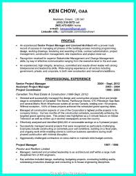 Creative It Project Manager Resume Linkedin Telecom Sample 27 Cool Construction