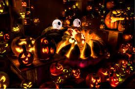 Roger Williams Pumpkin Spectacular 2017 by Jack O Lantern Spectacular Louisville Evan And Lauren S Cool