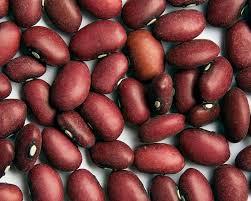 Welcome To Zursun Idaho Heirloom Beans