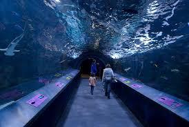 104 The Water Discus Underwater Hotel A Look Into Future Of Dubai Dubai Journal