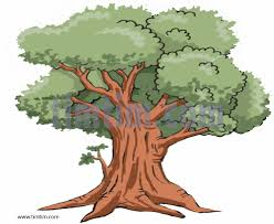 Realistic Tree Drawing