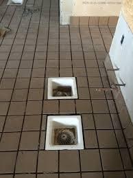 noodles company restaurant tiles restaurant renovation tile