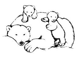 28 Collection Of Mama Bear Drawing