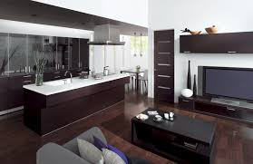 Kitchen Livingroom Combine And Living Room With Cuisia By Toto Digsdigs