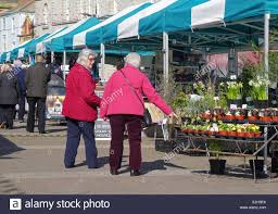 two senior ladies shopping for plants at a farmers market in truro