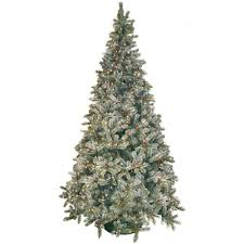 Slim Pre Lit Christmas Trees Canada by National Tree Company 9 Ft Feel Real Tiffany Fir Slim Hinged