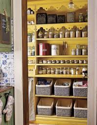 Pantry Cabinet Organization Ideas by Best Way Kitchen Pantry Storage Innovation Inspiration Home Design