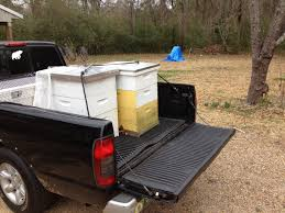 Beekeeping | Shooflyfarmblog Moving Bees Is Not Easy Slide Ridge Bee Notes Best Way To Become A Truck Driver Image Kusaboshicom Fueldoor Rumblebee3930 2004 Dodge Ram Rumble Bee 57 Hemi Dead Touring Country To Underscore Bee Declines Offramp Blocked By Overturned Truck Krcr 140815_204506162_ios The Fast Lane 2013 Ram 1500 Rumble Concept Rear Hd Wallpaper 9 Project Pink Women In Bkeeping Honey Delight Beeman Stans Removal Dade City Ill Take A Sting For You 2 Racing Stripe Boxing Vinyl Stickers Decals For