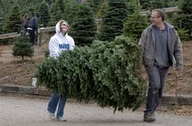 Sherwood Farm Draws Customers With More Than Christmas Trees
